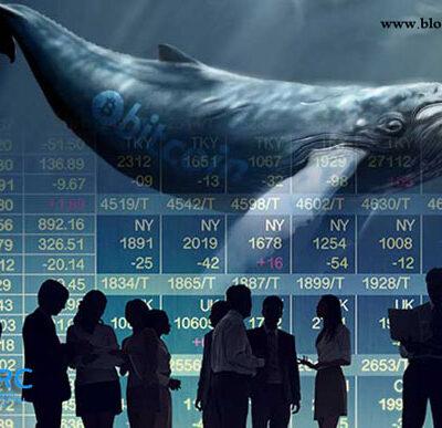 نهنگ در بازار سرمایه