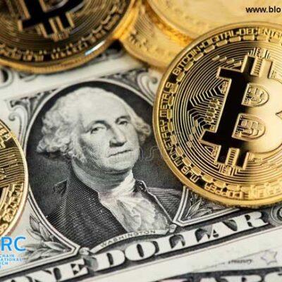 در رکود بازارهای مالی جهان، بیت کوین و دلار بهترین عملکرد را داشتند!
